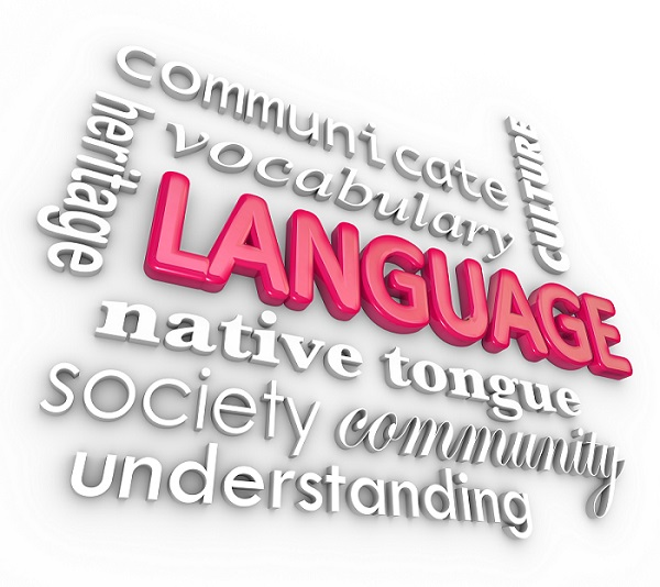 Language Communication requires more that simple word translation